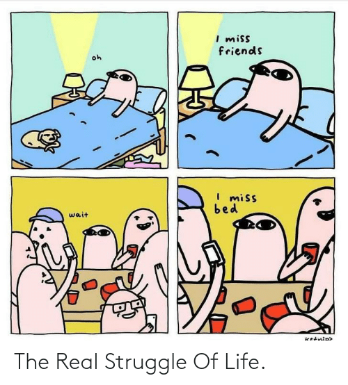 Friends, Life, and Struggle: I miss  friends  oh  I miss  bed  wait  ketnip> The Real Struggle Of Life.