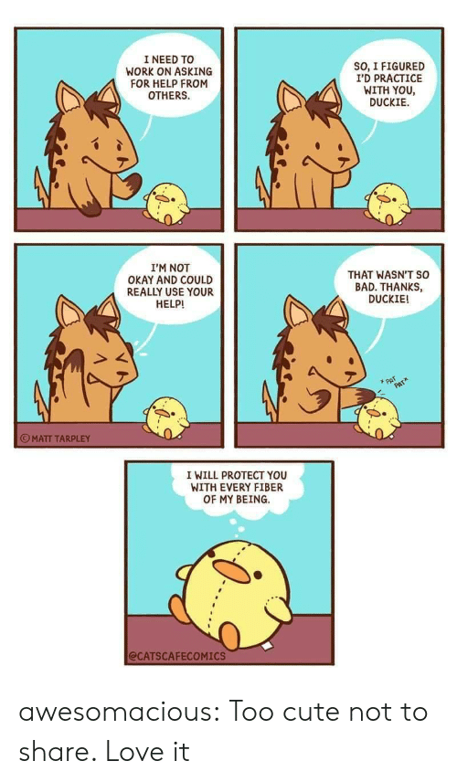 fiber: I NEED TO  WORK ON ASKING  FOR HELP FROM  OTHERS  SO, I FIGURED  I'D PRACTICE  WITH YOU  DUCKIE  I'M NOT  OKAY AND COULD  REALLY USE YOUR  HELP!  THAT WASN'T so  BAD. THANKS,  DUCKIE!  PAT  PAT  MATT TARPLEY  I WILL PROTECT YOU  WITH EVERY FIBER  OF MY BEING  @CATSCAFECOMICS awesomacious:  Too cute not to share. Love it