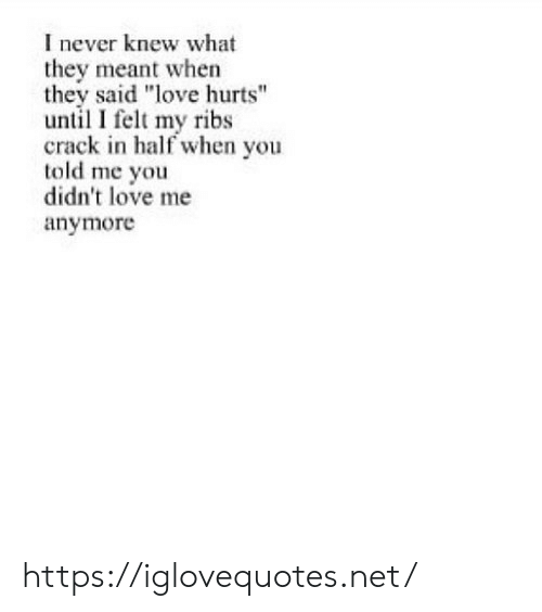 """Love, Never, and Net: I never knew what  they meant when  they said """"love hurts""""  until I felt my ribs  crack in half when you  told me you  didn't love me  anymore https://iglovequotes.net/"""
