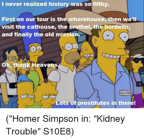 "Homer Simpson, Memes, and Homer: I never realized history was so filthy.  First on our tour is the whorehouse, then we'll  visit the cathouse, the brothel, the bordello,  and finally the old mission  Oh, thank Heavens  GUI  ts of prostitutes in there! (""Homer Simpson in: ""Kidney Trouble"" S10E8)"