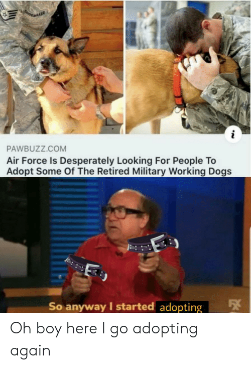 Dogs, Air Force, and Military: i  PAWBUZZ.COM  Air Force Is Desperately Looking For People To  Adopt Some Of The Retired Military Working Dogs  So anyway I started adopting Oh boy here I go adopting again