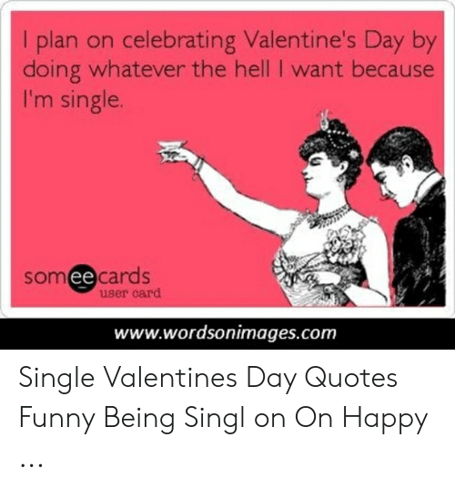 I Plan on Celebrating Valentine\'s Day by Doing Whatever the ...