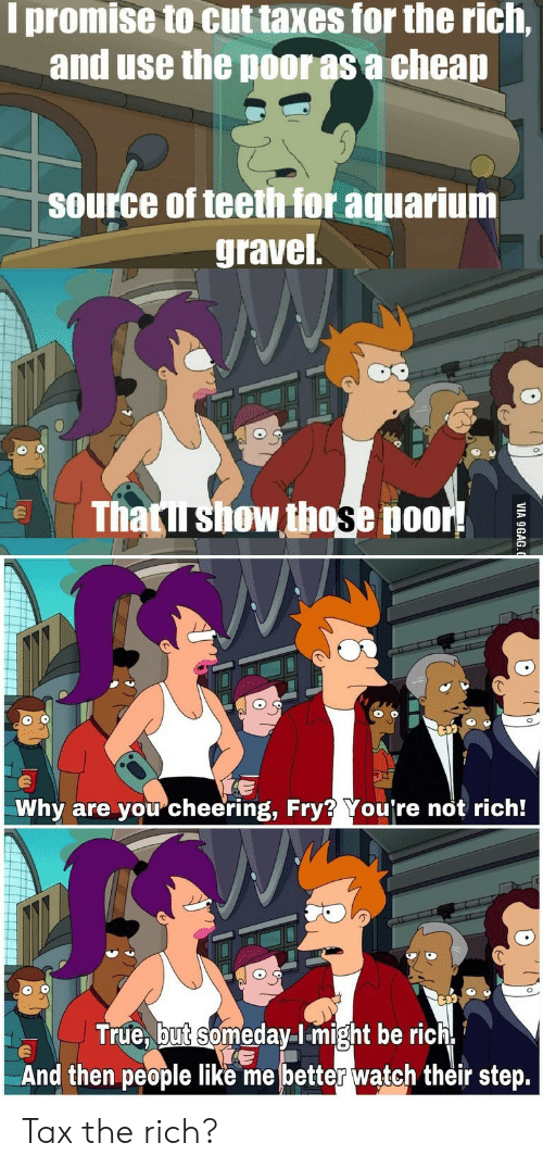 Aquarium: I promise to cut taxes for the rich,  and use the poor as a cheap  source of teeth for aquarium  gravel  Thatirshow those poor!  Why are youcheering, Fry? You're not rich!  True, but someday-lmight be rich  And then people like me better waątch their step.  VIA 9GAG Tax the rich?
