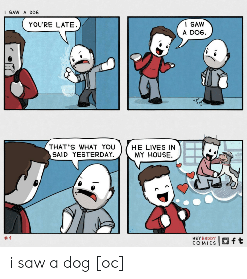 My House, Saw, and House: I SAW A D06  YOU'RE LATE  I SAW  A DOG  TAP  TAP  THAT'S WHAT YOU  SAID YESTERDAY.  HE LIVES IN  MY HOUSE  #4  HEY BUDDY  COMICS  ft i saw a dog [oc]