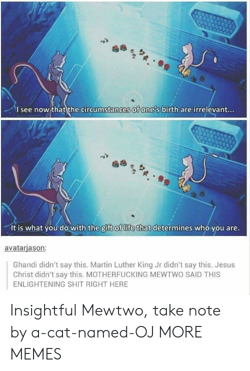 Martin Luther King: I see now that the circumstances of one s birth are irrelevant...  It is what you do with the gift of life that determines who you are.  avatarjason:  Ghandi didn't say this. Martin Luther King Jr didn't say this. Jesus  Christ didn't say this. MOTHERFUCKING MEWTWO SAID THIS  ENLIGHTENING SHIT RIGHT HERE Insightful Mewtwo, take note by a-cat-named-OJ MORE MEMES