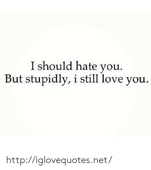Love, Http, and Net: I should hate you.  But stupidly, i still love you. http://iglovequotes.net/