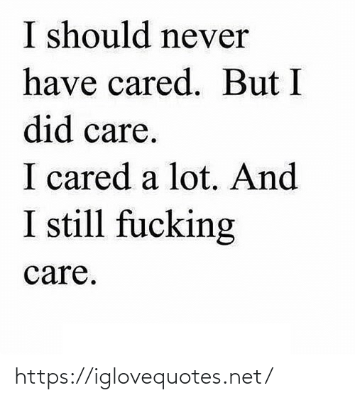 Never Have: I should never  have cared. But I  did care.  I cared a lot. And  I still fucking  care. https://iglovequotes.net/