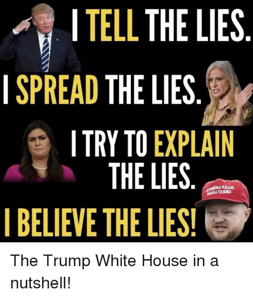 Memes, White House, and House: I TELL THE LIES  ISPREAD THE LIES  TRY TO EXPLAIN  THE LIES  BELIEVE THE LIES! The Trump White House in a nutshell!