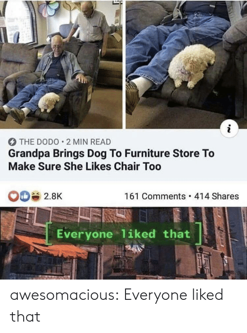 Furniture: i  THE DODO 2 MIN READ  Grandpa Brings Dog To Furniture Store To  Make Sure She Likes Chair Too  161 Comments 414 Shares  2.8K  Everyone 1iked that awesomacious:  Everyone liked that