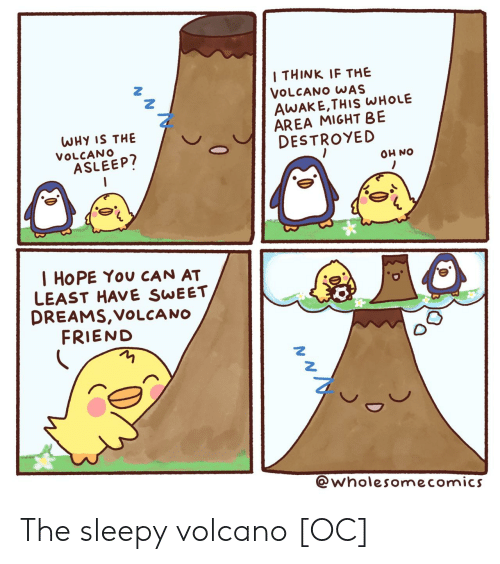 destroyed: I THINK IF THE  VOLCANO WAS  AWAKE,THIS WHOLE  AREA MIGHT BE  DESTROYED  WHY IS THE  VOLCANO  ASLEEP?  ON HO  I HOPE You CAN AT  LEAST HAVE SWEET  DREAMS,VOLCA NO  FRIEND  @wholesomecomics  0 The sleepy volcano [OC]