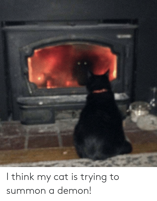 Cat, Demon, and Think: I think my cat is trying to summon a demon!