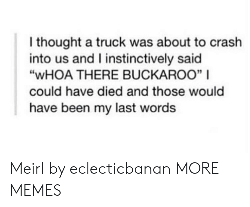 "Dank, Memes, and Target: I thought a truck was about to crash  into us and I instinctively said  ""WHOA THERE BUCKAROO"" 
