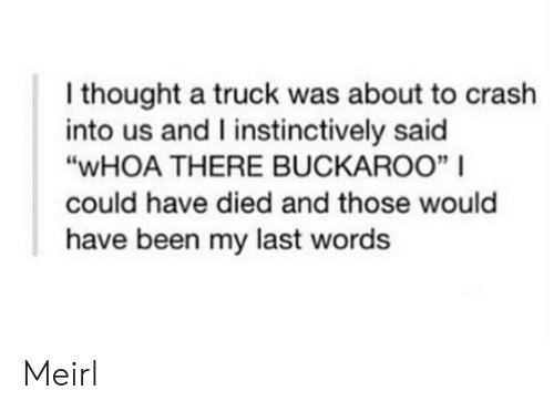 """Last Words, Thought, and MeIRL: I thought a truck was about to crash  into us and I instinctively said  """"WHOA THERE BUCKAROO""""    could have died and those would  have been my last words Meirl"""