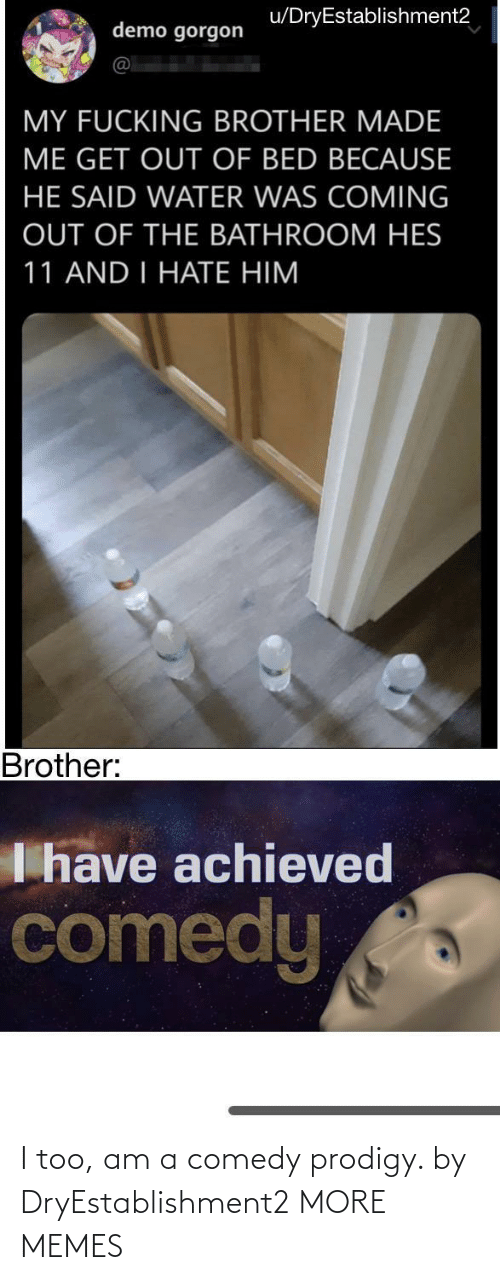 Comedy: I too, am a comedy prodigy. by DryEstablishment2 MORE MEMES
