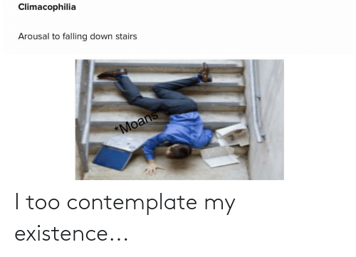 contemplate: I too contemplate my existence...