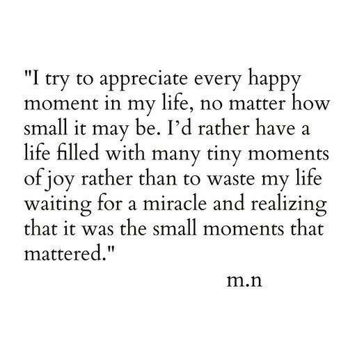 "Appreciate: ""I try to appreciate every happy  moment in my life, no matter how  small it may be. I'd rather have  life filled with many tiny moments  of joy rather than to waste my life  waiting for a miracle and realizing  that it was the small moments that  mattered.""  m.n"