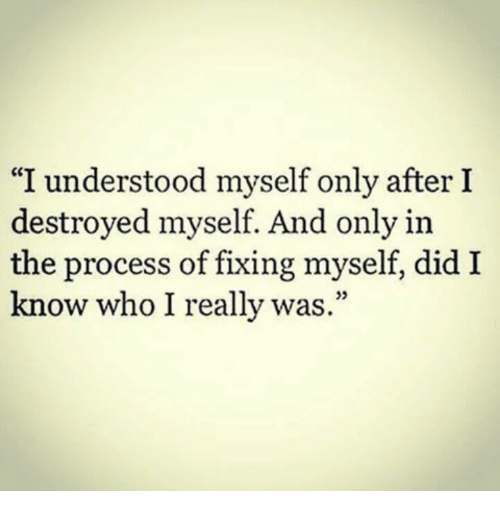 """Who, Did, and Really: """"I understood myself only after I  destroyed myself. And only in  the process of fixing myself, did I  know who I really was.""""  35"""