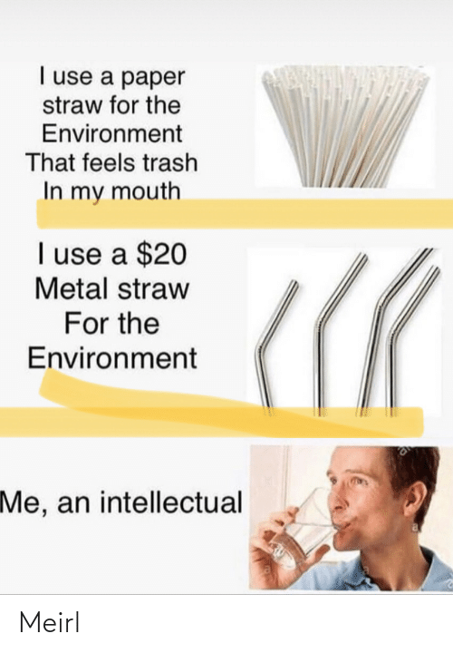 An Intellectual: I use a paper  straw for the  Environment  That feels trash  In my mouth  I use a $20  Metal straw  For the  Environment  Me, an intellectual Meirl