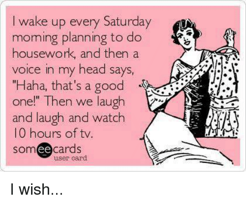 """Housework: I wake up every Saturday  moming planning to do  housework, and then a  voice in my head says,  """"Haha, that's a good  one!"""" Then we laugh  and laugh and watch  10 hours of tv  somee cards  user card I wish..."""