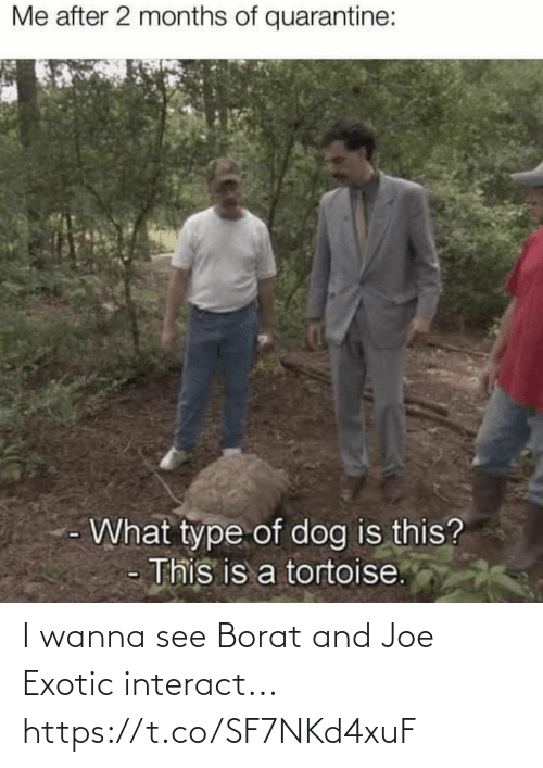 Borat: I wanna see Borat and Joe Exotic interact... https://t.co/SF7NKd4xuF