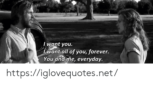 Forever, Net, and All: I want you.  want all of you, forever.  You and me, everyday. https://iglovequotes.net/