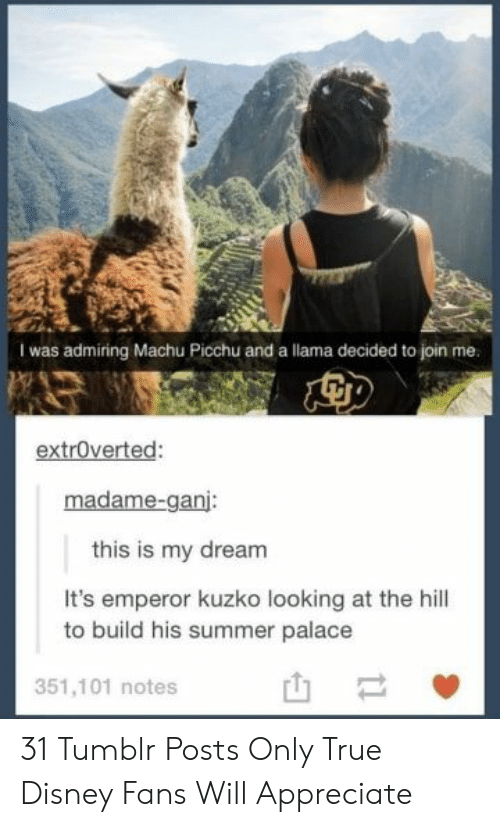 Appreciate: I was admiring Machu Picchu and a llama decided to join me.  extroverted:  madame-ganj:  this is my dream  It's emperor kuzko looking at the hill  to build his summer palace  351,101 notes  t1 31 Tumblr Posts Only True Disney Fans Will Appreciate