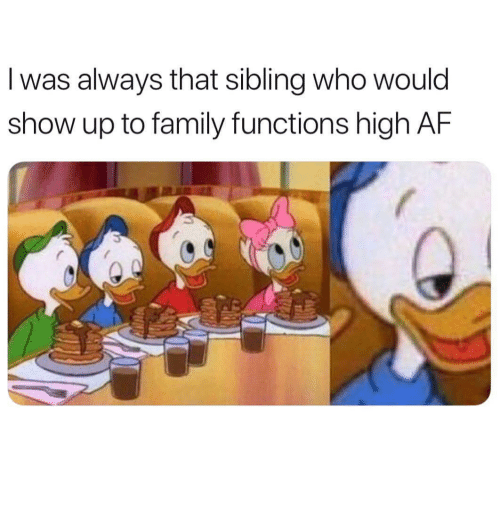 to family: I was always that sibling who would  show up to family functions high AF