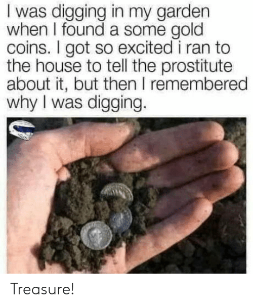 House, Got, and Gold: I was digging in my garden  when I found a some gold  coins. I got so excited i ran to  the house to tell the prostitute  about it, but then I remembered  why I was digging. Treasure!