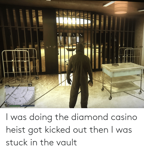 the vault: I was doing the diamond casino heist got kicked out then I was stuck in the vault