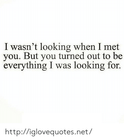 Http, Net, and Looking: I wasn't looking when I met  you. But you turned out to be  everything I was looking for. http://iglovequotes.net/