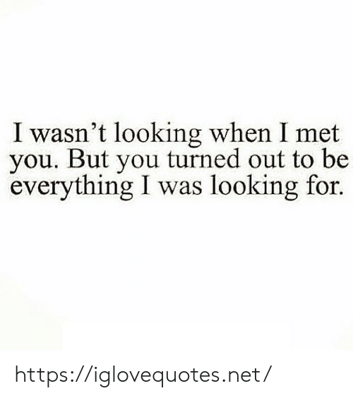 Net, Looking, and You: I wasn't looking when I met  you. But you turned out to be  everything I was looking for. https://iglovequotes.net/
