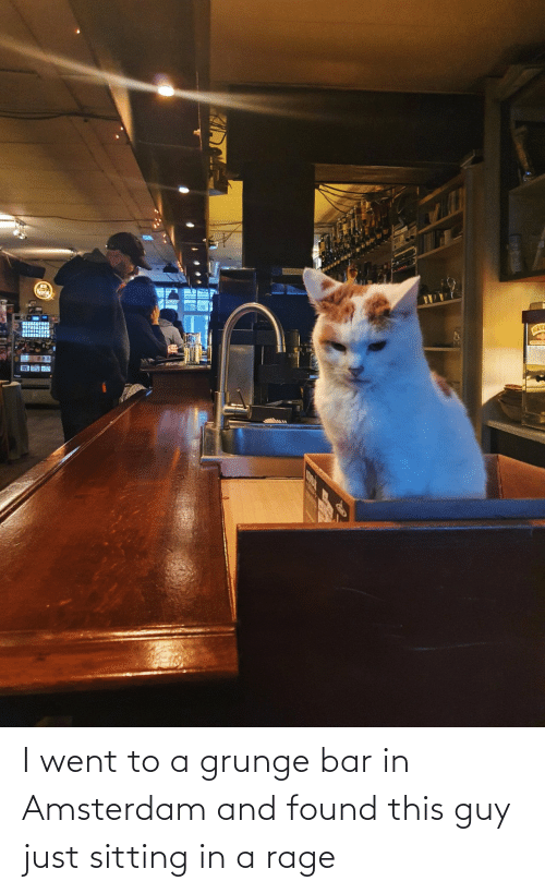 rage: I went to a grunge bar in Amsterdam and found this guy just sitting in a rage