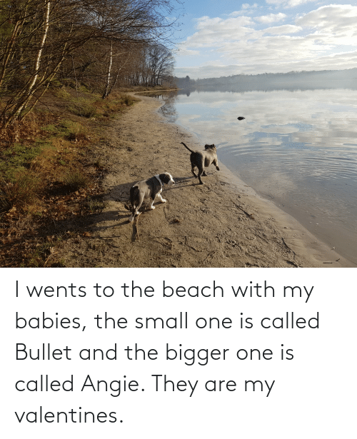 called: I wents to the beach with my babies, the small one is called Bullet and the bigger one is called Angie. They are my valentines.
