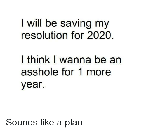 Dank, Asshole, and 🤖: I will be saving my  resolution for 2020  l think I wanna be an  asshole for 1 more  year. Sounds like a plan.