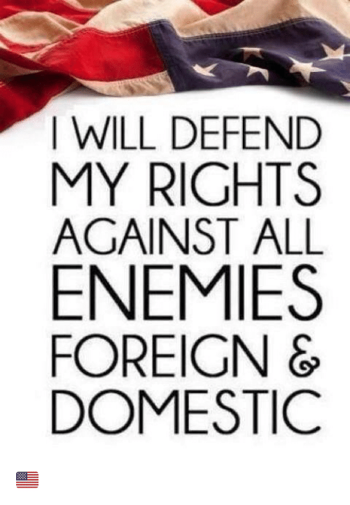 Memes, Enemies, and 🤖: I WILL DEFEND  MY RIGHTS  AGAINST ALL  ENEMIES  FOREIGN &  DOMESTIC 🇺🇸
