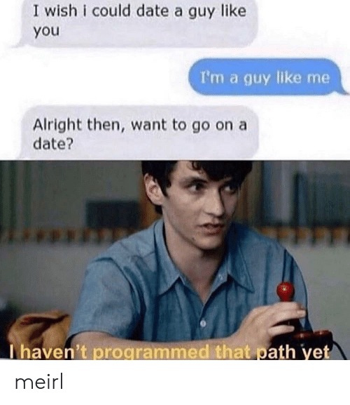 Programmed: I wish i could date a guy like  you  I'm a guy like me  Alright then, want to go on a  date?  Thaven't programmed that path yet meirl