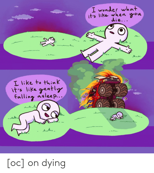 dying: I wonder what  it's like when you  die...  I like to think  it's like gently  falling asleep... [oc] on dying