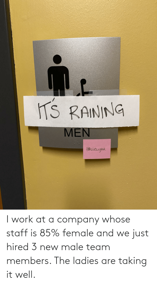 company: I work at a company whose staff is 85% female and we just hired 3 new male team members. The ladies are taking it well.