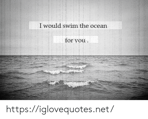 Ocean, Net, and You: I would swim the ocean  for you https://iglovequotes.net/
