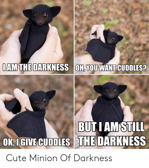 cuddles: IAM THE DARKNESS OH, YOUWANT CUDDLES?  BUT I AM STILL  OK,IGIVE CUDDLES THE DARKNESS Cute Minion Of Darkness