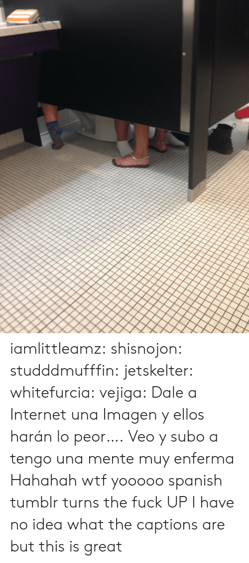 asd: iamlittleamz:  shisnojon:  studddmufffin:  jetskelter:  whitefurcia:  vejiga:  Dale a Internet una Imagen     y ellos harán lo peor….  Veo y subo a   tengo una mente muy enferma    Hahahah wtf  yooooo spanish tumblr turns the fuck UP   I have no idea what the captions are but this is great
