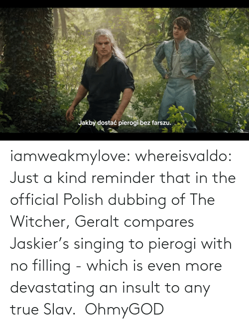 Official: iamweakmylove:  whereisvaldo:  Just a kind reminder that in the official Polish dubbing of The Witcher, Geralt compares Jaskier's singing to pierogiwith no filling- which is even more devastating an insult to any true Slav.   OhmyGOD