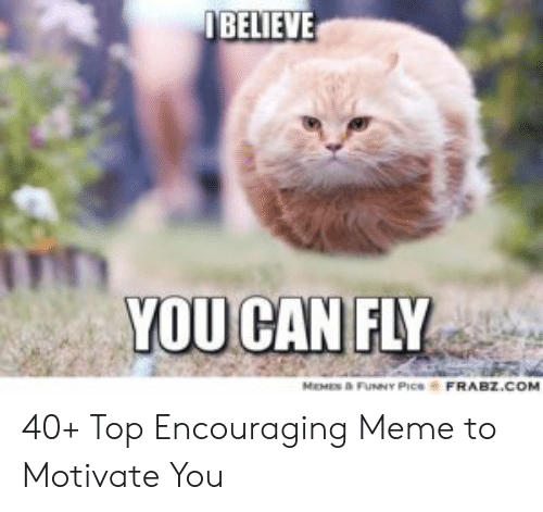 Encouraging Meme: IBELIEVE  YOU CAN FLY  MEMES & FUNNY PICS  FRABZ.COM 40+ Top Encouraging Meme to Motivate You