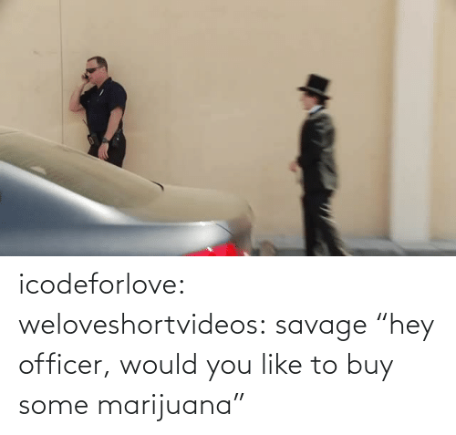 """Would You Like To: icodeforlove: weloveshortvideos:  savage  """"hey officer, would you like to buy some marijuana"""""""