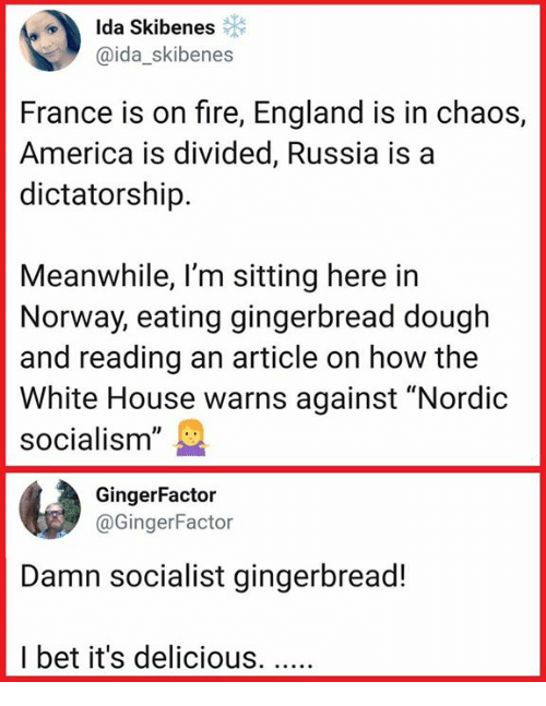 "America, England, and Fire: Ida Skibenes  @ida_skibenes  France is on fire, England is in chaos,  America is divided, Russia is a  dictatorship.  Meanwhile, l'm sitting here in  Norway, eating gingerbread dough  and reading an article on how the  White House warns against ""Nordic  socialism""  GingerFactor  @GingerFactor  Damn socialist gingerbread!  I bet it's delicious."