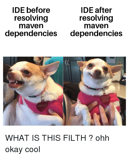 Cool, Okay, and What Is: IDE before  IDE after  resolving  maven  resolving  maven  dependencies dependencies  LILY LU WHAT IS THIS FILTH ? ohh okay cool