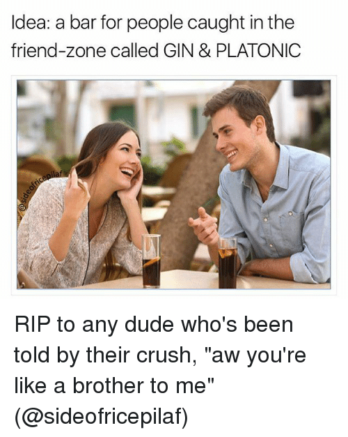 "Friend Zoning: Idea: a bar for people caught in the  friend-zone called GIN & PLATONIC RIP to any dude who's been told by their crush, ""aw you're like a brother to me"" (@sideofricepilaf)"