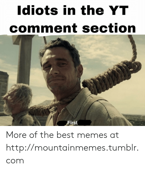 Memes, Tumblr, and Best: Idiots in the YT  comment section  First More of the best memes at http://mountainmemes.tumblr.com