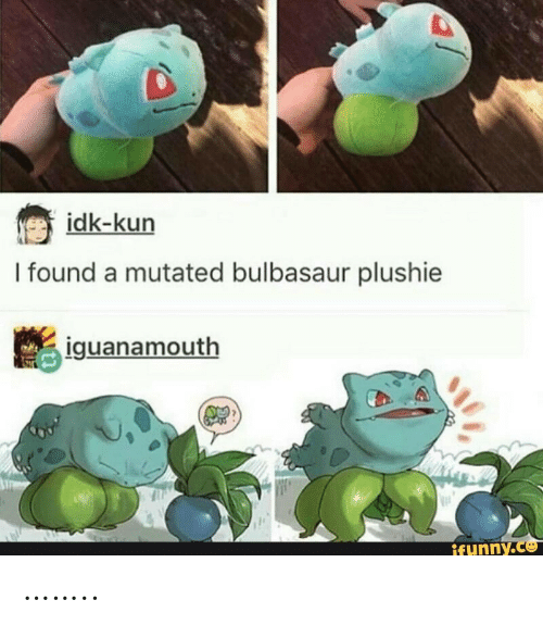 bulbasaur: idk-kun  I found a mutated bulbasaur plushie  iguanamouth  ifynny.co ……..