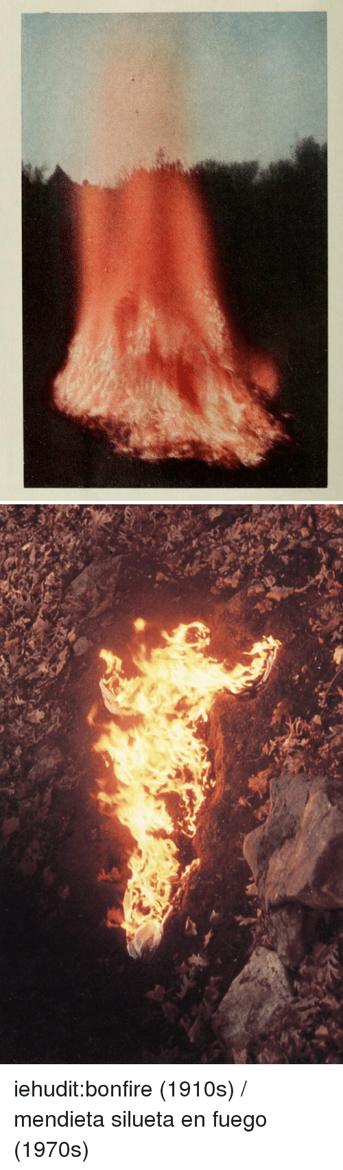 Tumblr, Blog, and Http: iehudit:bonfire (1910s) / mendieta silueta en fuego (1970s)